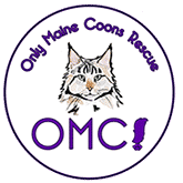 our maine coon rescue logo